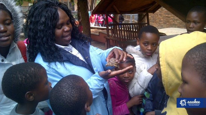 - SOS Children's Villages Mamelodi to Lory Park Animal & Owl Sanctuary